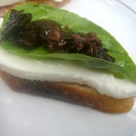 Crostini with Burrata, Basil and Sundried Tomatoes