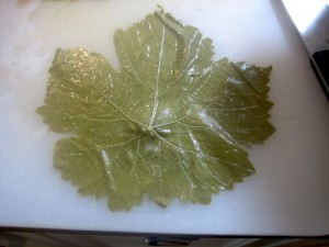 Grape Leaf on cutting board