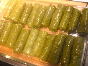 Stuffed grape leaves ready for the oven